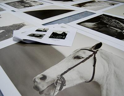 Decoracion fotografica para showroom de Ralph Lauren