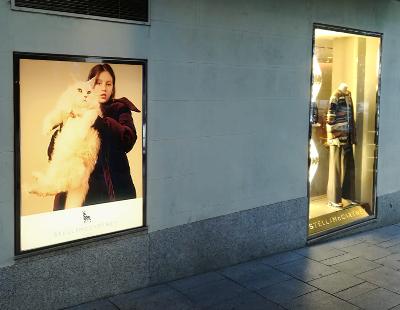 Instalacion de vinilo translúcido en boutique Stella McCartney